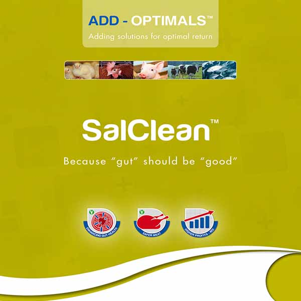 Picture of SalClean
